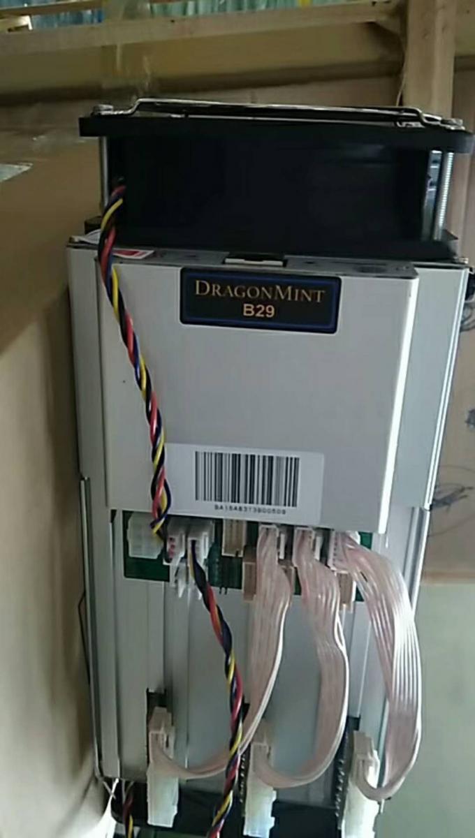 DRAGONMINT B29 BLAKE256